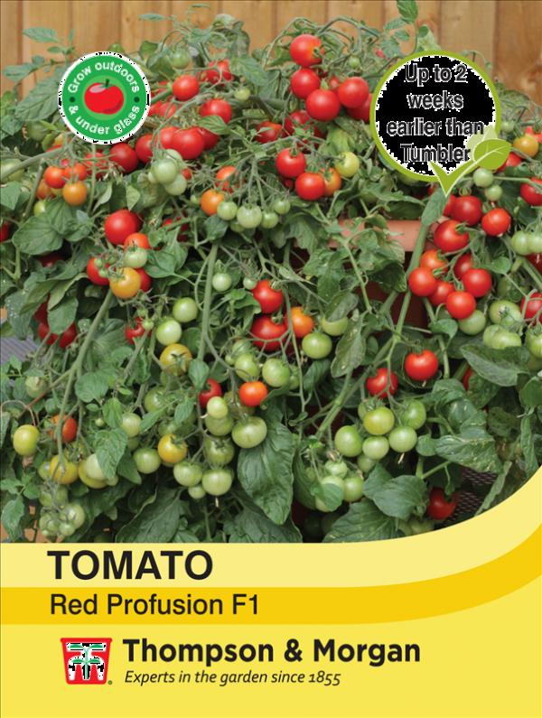 Tomato Red Profusion