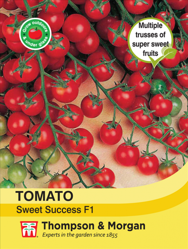 Tomato Sweet Success F1