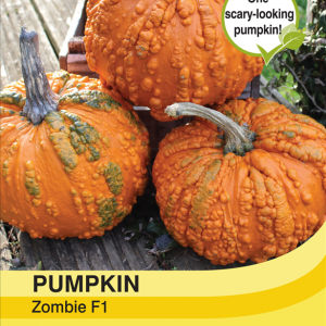 Pumpkin Zombie F1