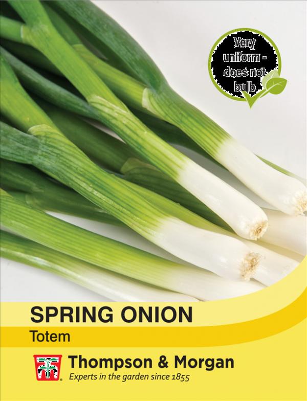 Spring Onion Totem