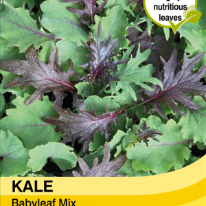 Kale Babyleaf Mix