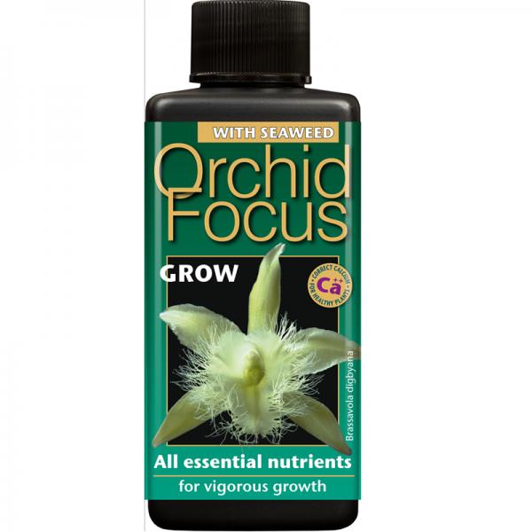 Orchid Focus Grow 300ml