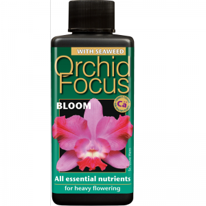 Orchid Bloom 300ml