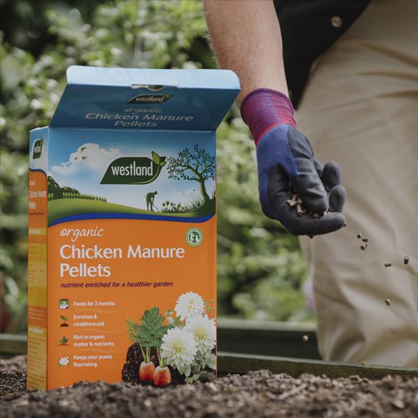 Organic Chicken Manure Pellets