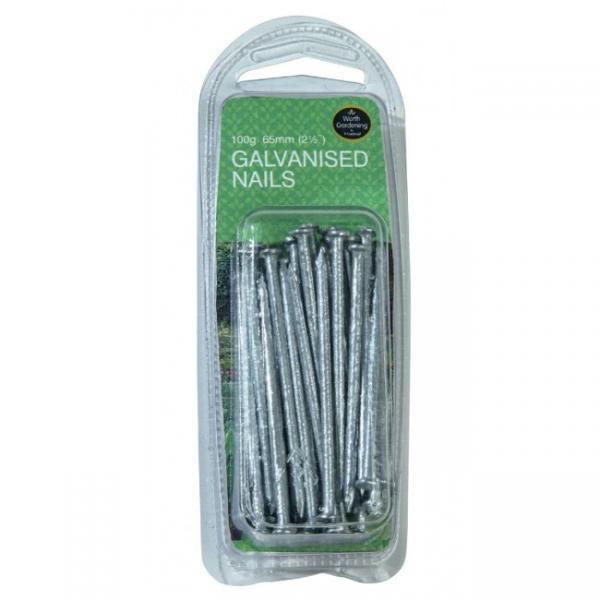 "65mm (2 1/2"") Galvanised Nails (100g)"