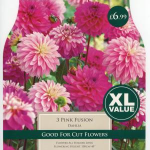 XL Value Dahlia Pink