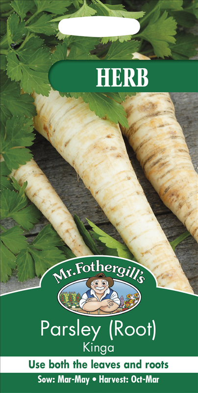 Parsley (Root) Kinga