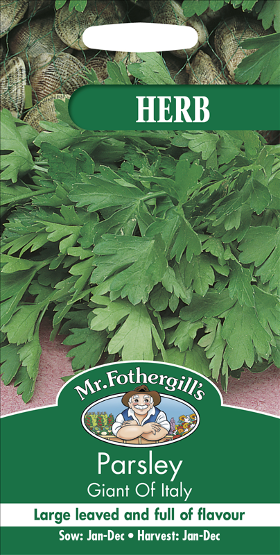 Parsley Giant Of Italy