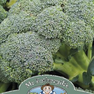 Broccoli (Autumn) Covin