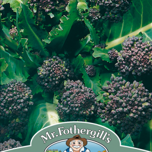 Broccoli (Sprouting) Early purple