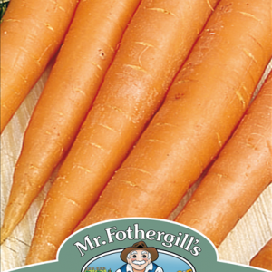Carrot James Scarlet Intermediate