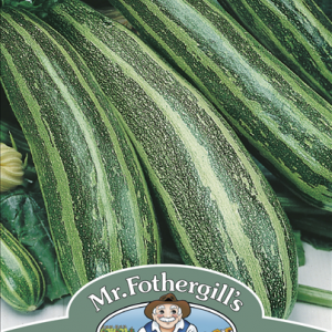 Courgette Coucourzelle