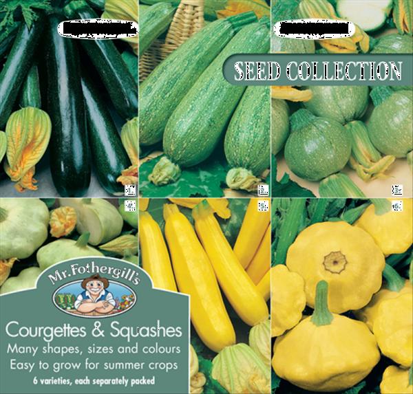Courgettes & Summer Squash