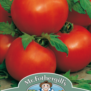 Tomato Ailsa Craig