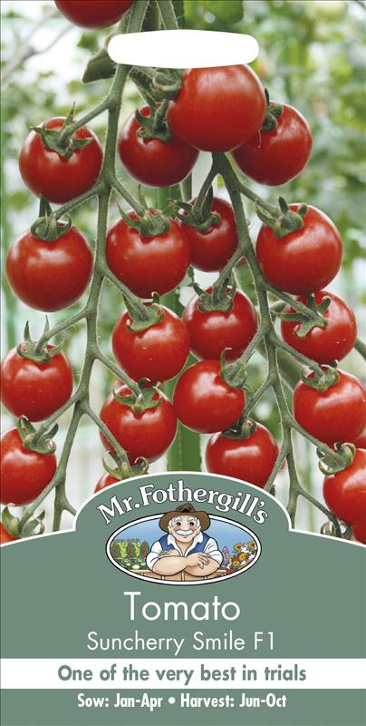 Tomato Suncherry Smile