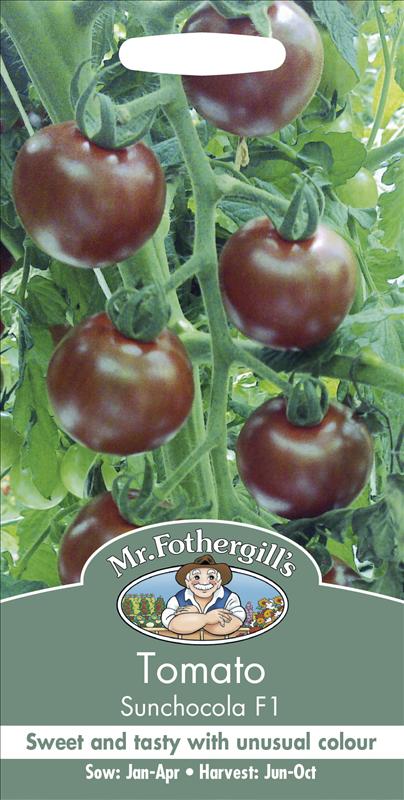 Tomato Sunchocola F1