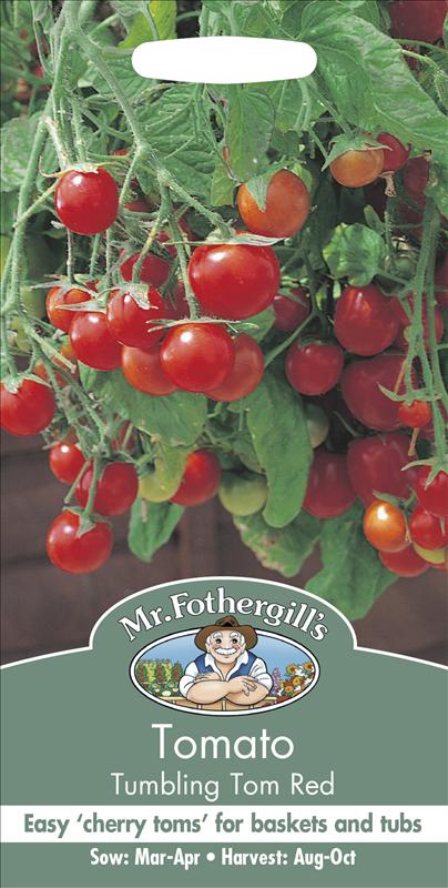 Tomato Tumbling Tom Red