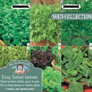 Easy Salad Leaves