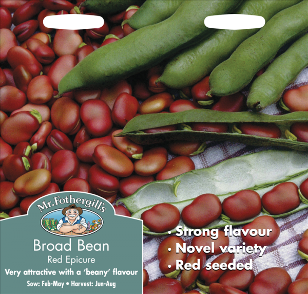 Broad Bean Red Epicure