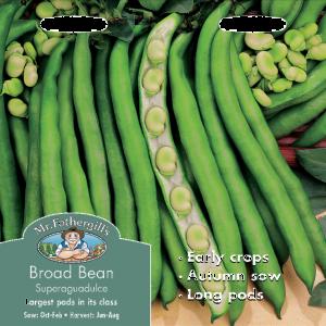 Broad Bean Superaguadulce
