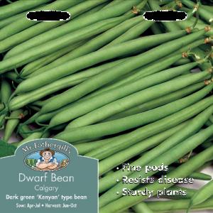 Dwarf French Bean Calgary