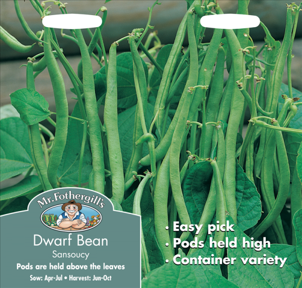 Dwarf French Bean Sansoucy