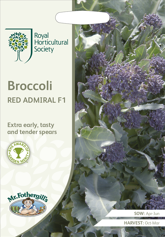 RHS Broccoli Red Admiral