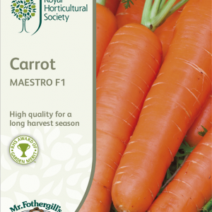 RHS Carrot Maestro F1
