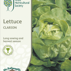 RHS Lettuce Clarion (Butterhead)