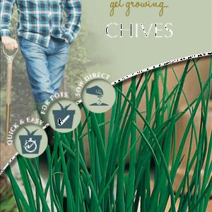 David Domoney Chives