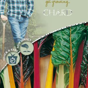 David Domoney Chard