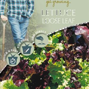 David Domoney Lettuce Loose Leaf