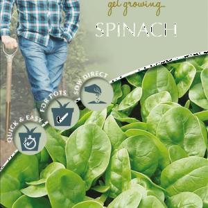 David Domoney Spinach