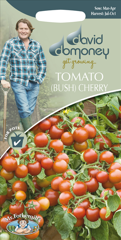 David Domoney Tomato (Bush) Cherry