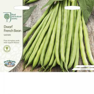 RHS Bean Dwarf French