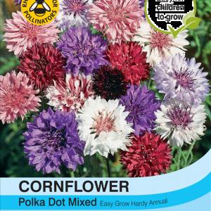 Cornflower Polka Dot Mixed