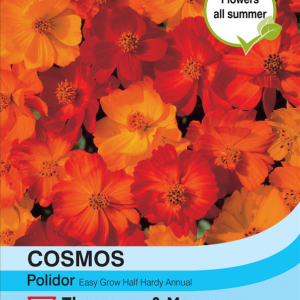 Cosmos Polidor
