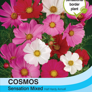 Cosmos Sensation Mixed