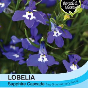 Lobelia Sapphire Cascade