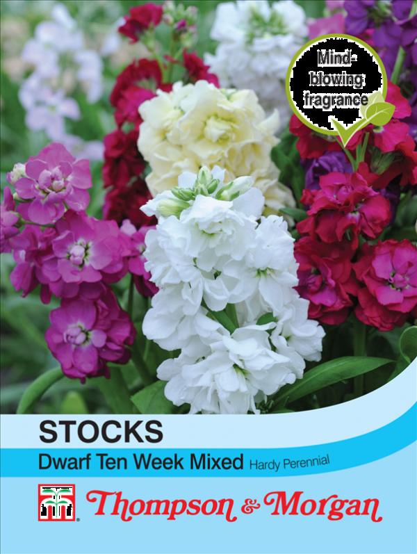 Stocks Dwarf Ten Week Mixed