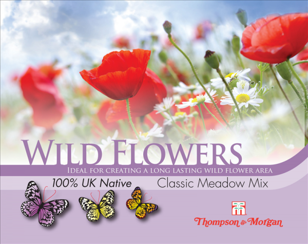 Wild Flower Classic Meadow