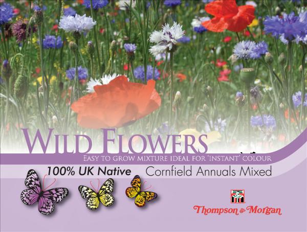 Wild Flower Cornfield Annuals