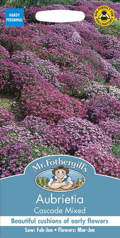 Aubrieta Cascade Mixed