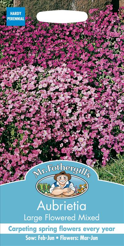 Aubrieta Large Flowered