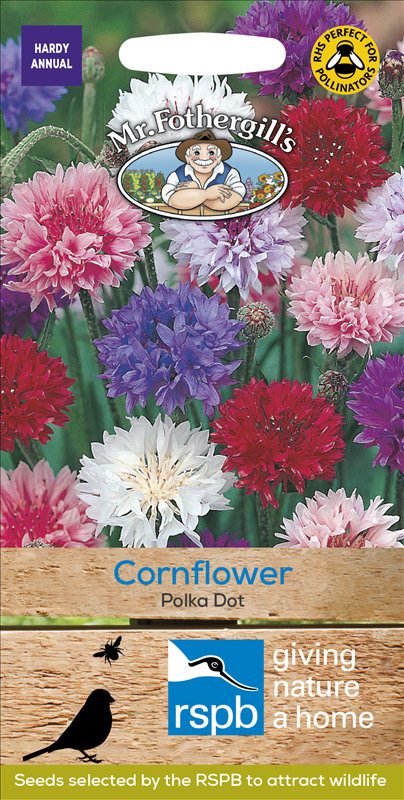Cornflower Polka Dot