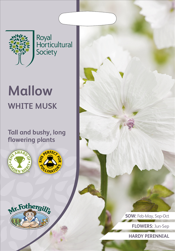 RHS Mallow White Musk
