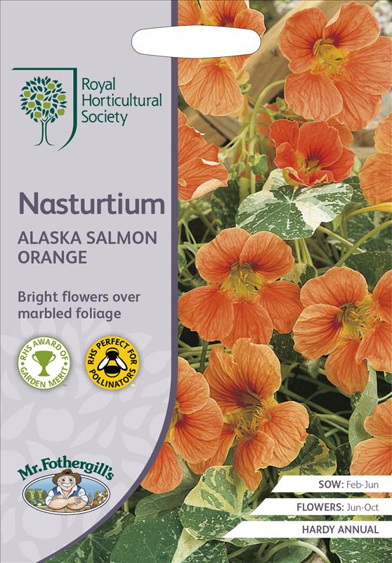 RHS Nasturtium Alaska Salmon Orange