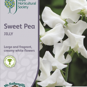 RHS Sweet Pea Jilly