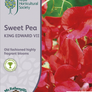 RHS Sweet Pea King Edwar