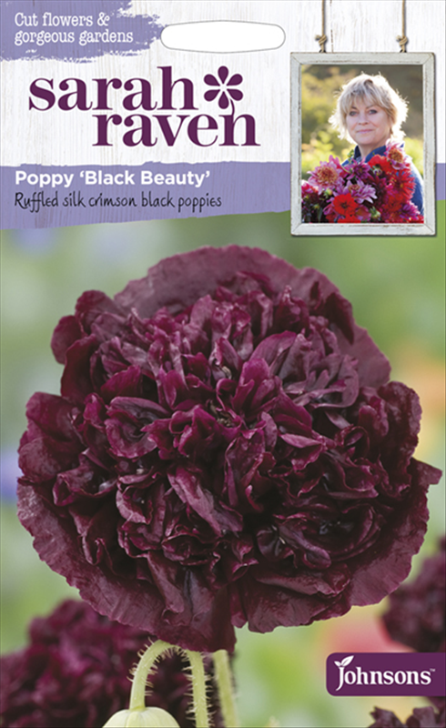 Poppy Black Beauty